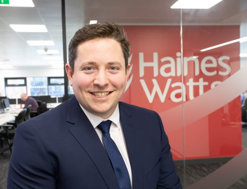 Haines Watts celebrates office anniversary with high profile appointments and revenue boost